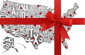 Tour States Christmas bow